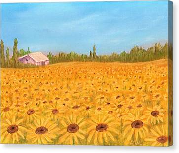 Sunflower Field Canvas Print by Anastasiya Malakhova