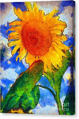 Sunflower - From Heaven Above Canvas Print by Janine Riley