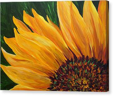 Sunflower From Summer Canvas Print by Mary Jo Zorad