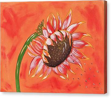 Sunflower In Fall Canvas Print