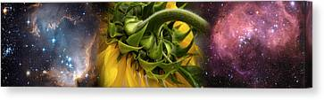 Sunflower In The Hubble Cosmos Canvas Print by Panoramic Images