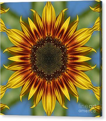 Sunflower Kaleidoscope Canvas Print by Cindi Ressler