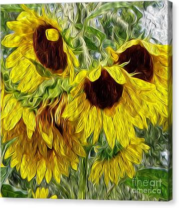 Sunflower Morn  Canvas Print by Ecinja Art Works