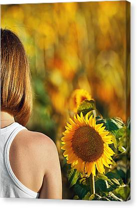 Sunflower Canvas Print by Nur TANRIOVEN