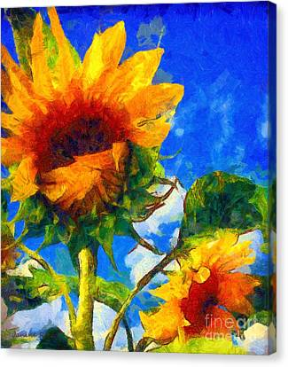 Sunflower - Oh I've Said Too Much Canvas Print by Janine Riley