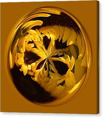 Sunflower Orb Canvas Print by Paulette Thomas