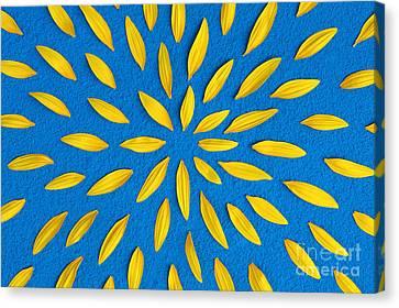 Sunflower Petals Pattern Canvas Print