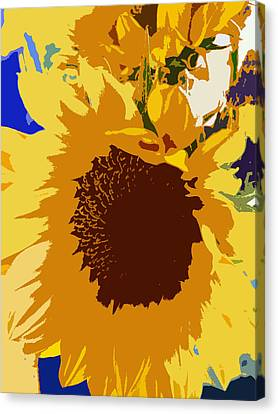 Sunflower Pop Canvas Print by Colleen Kammerer