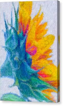 Sunflower Profile Impressionism Canvas Print by Heidi Smith