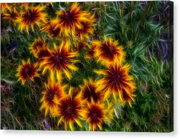 Sunflower Saturation Canvas Print by Omaste Witkowski