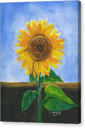 Canvas Print featuring the painting Sunflower Series Two by Thomas J Herring
