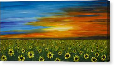 Sunflower Sunset - Flower Art By Sharon Cummings Canvas Print by Sharon Cummings