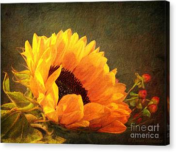 Digital Sunflower Canvas Print - Sunflower - You Are My Sunshine by Lianne Schneider