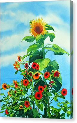 Sunflowers 2014 Canvas Print by Mary Helmreich