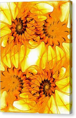 Sunflowers Canvas Print by Anastasiya Malakhova