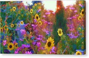 Sunflowers And Cosmos Canvas Print by Douglas MooreZart