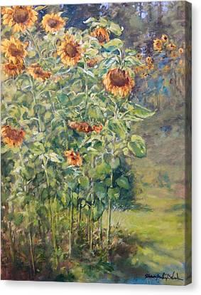 Sunflowers At Watermelon Farm Canvas Print by Sharon Jordan Bahosh
