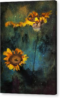 Sunflowers In Night Sky Canvas Print