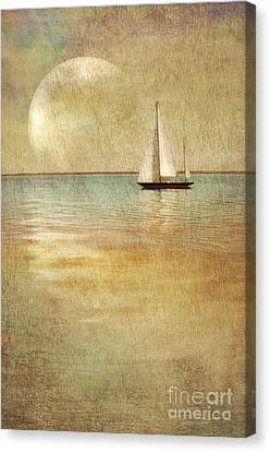 Sunken Tears Canvas Print by Werner Manhart