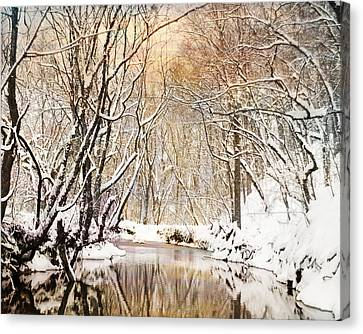 Sunkissed Winter Creek Canvas Print by Jai Johnson