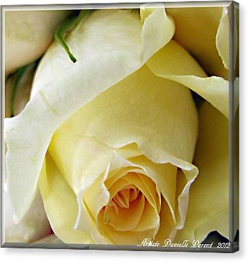 Sunkissed Yellow Rose Canvas Print