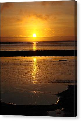 Canvas Print featuring the photograph Sunkist Sunset by Athena Mckinzie
