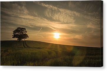 Sunlight Across The Crops Canvas Print by Chris Fletcher