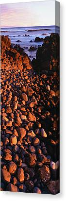 Roca Canvas Print - Sunlight Falling On Cobblestones by Panoramic Images