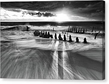 Sunlight Canvas Print by Mel Brackstone