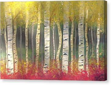 Sunlight On Aspens Canvas Print