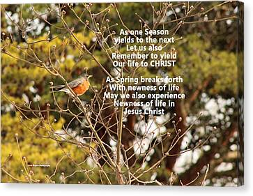 Canvas Print featuring the photograph Sunlight On Robin With Poetry by Lorna Rogers Photography