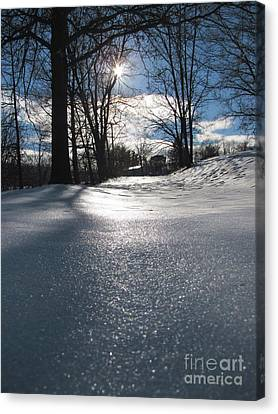 Sunlight On Snow Canvas Print by Melissa Stoudt