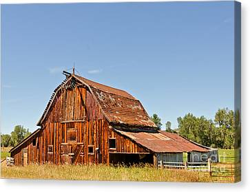 Canvas Print featuring the photograph Sunlit Barn by Sue Smith