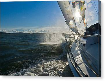 Sunlit Bow Spray Canvas Print by Gary Eason