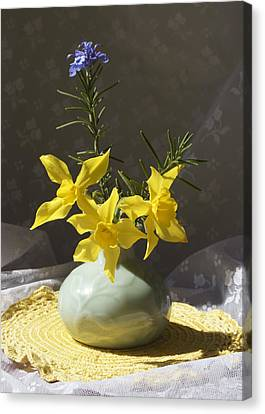 Sunlit Daffodils In A Celadon Vase Canvas Print by MM Anderson