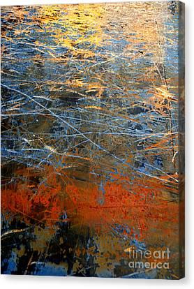 Sunlit Fibers Canvas Print by Robert Riordan