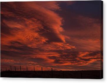 Sunlit Fire Canvas Print