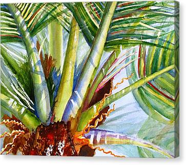 Sunlit Palm Fronds Canvas Print by Carlin Blahnik