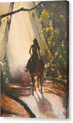 Sunlit Path Canvas Print by Diana Besser