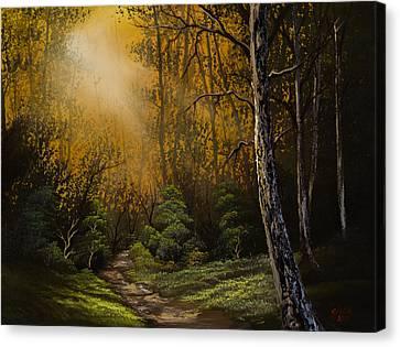 Sunlit Trail Canvas Print by C Steele