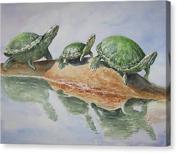 Sunning Turtles Canvas Print