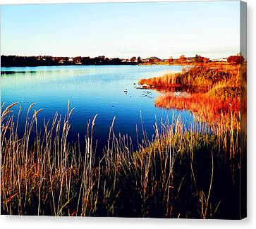 Canvas Print featuring the photograph Sunny Afternoon by Zinvolle Art