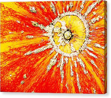 Sunny Canvas Print by Arkady Kunysz