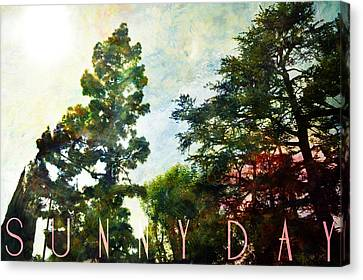 Sunny Day Canvas Print by John Fish