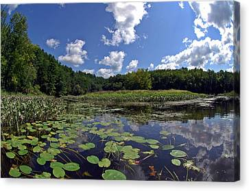 Sunny Day On The Merrimack Canvas Print by Rick Frost