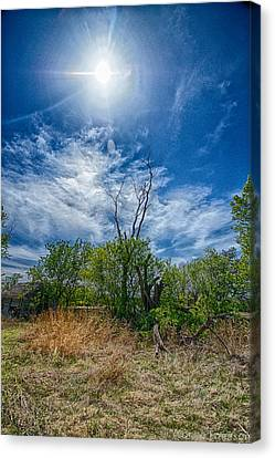 Canvas Print featuring the photograph Sunny Days by Yvonne Emerson AKA RavenSoul