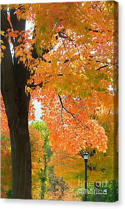 Canvas Print featuring the photograph Sunny Fall Day By David Lawrence by David Perry Lawrence