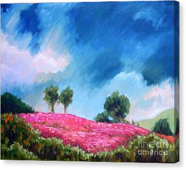 Sunny Field Of Wildflowers Canvas Print