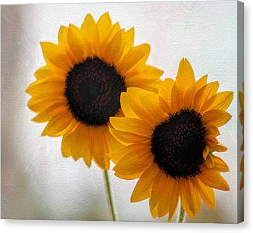 Sunny Flower On A Rainy Day Canvas Print by Tammy Espino
