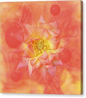 Sunny Flower Universe Canvas Print by David Wise